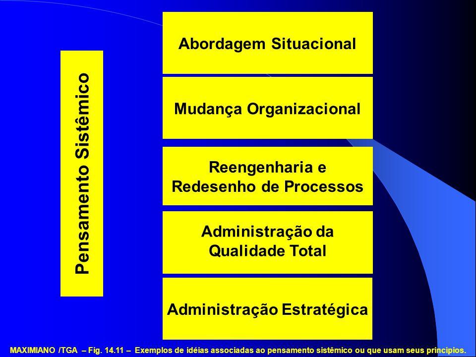 Pensamento Sistêmico Abordagem Situacional Mudança Organizacional