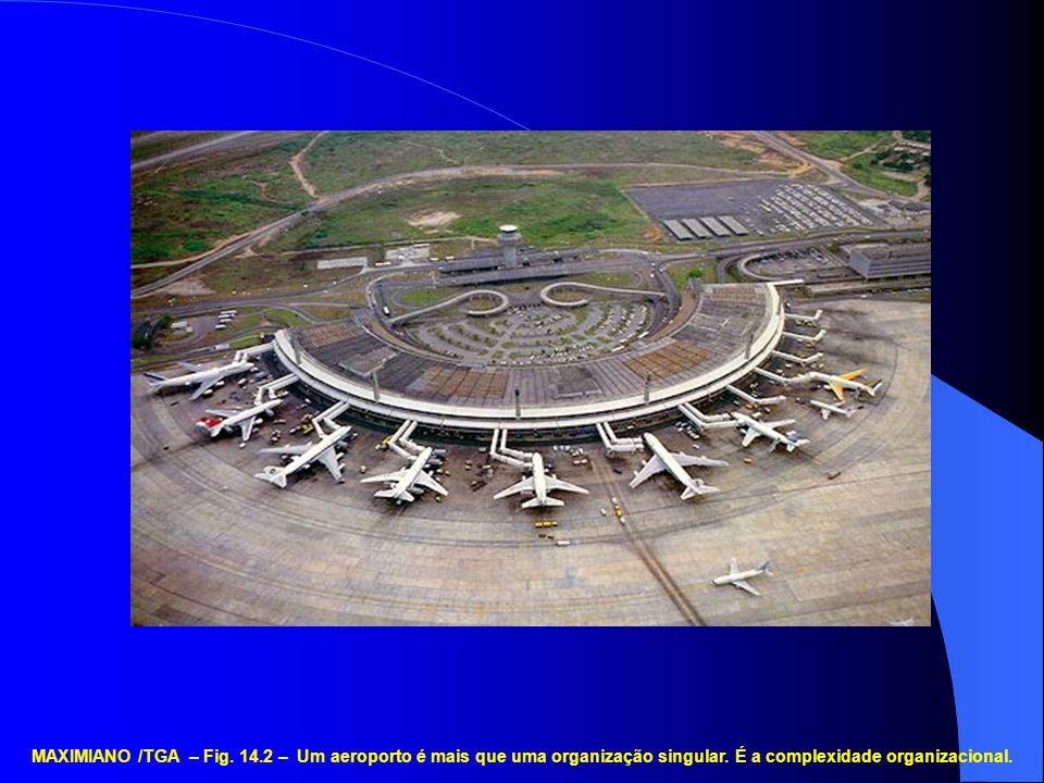 MAXIMIANO /TGA – Fig. 14.2 – Um aeroporto é mais que uma organização singular.