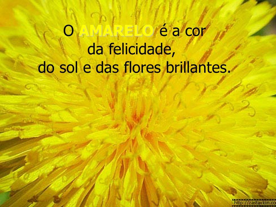 O AMARELO é a cor da felicidade, do sol e das flores brillantes.