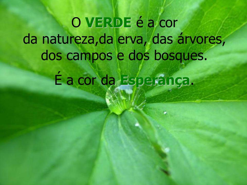O VERDE é a cor da natureza,da erva, das árvores, dos campos e dos bosques.