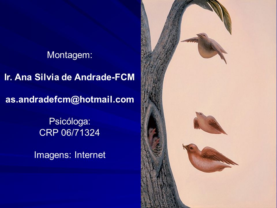 Ir. Ana Silvia de Andrade-FCM