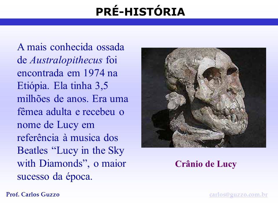 A mais conhecida ossada de Australopithecus foi encontrada em 1974 na Etiópia. Ela tinha 3,5 milhões de anos. Era uma fêmea adulta e recebeu o nome de Lucy em referência à musica dos Beatles Lucy in the Sky with Diamonds , o maior sucesso da época.