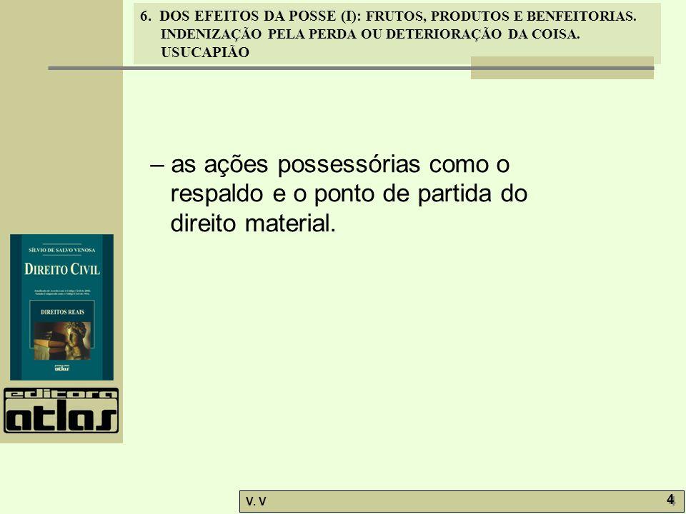 – as ações possessórias como o respaldo e o ponto de partida do direito material.