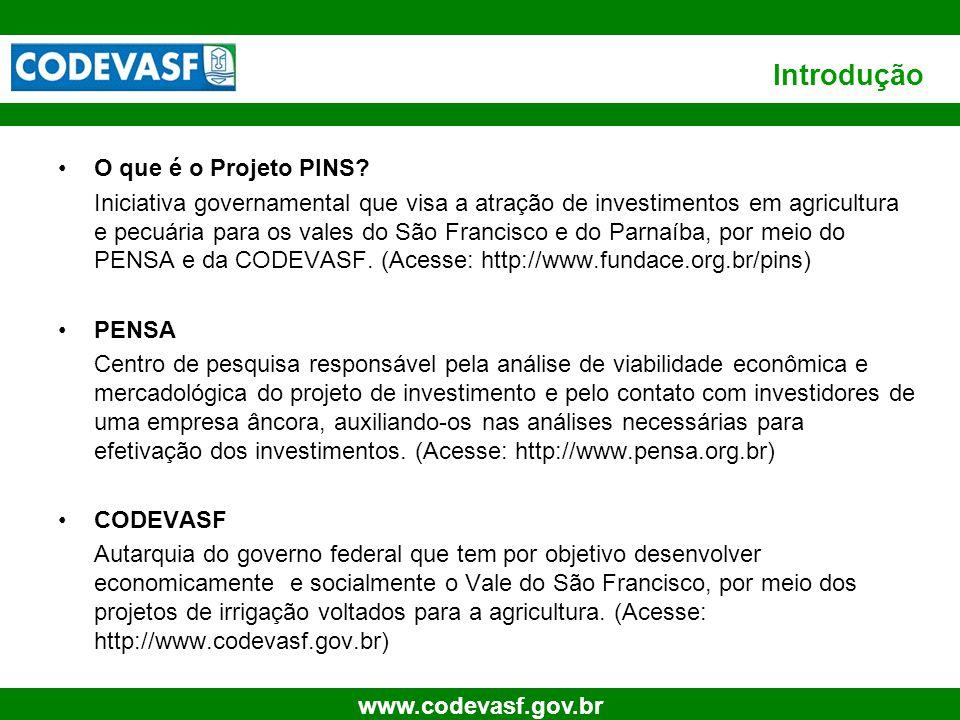 Introdução O que é o Projeto PINS