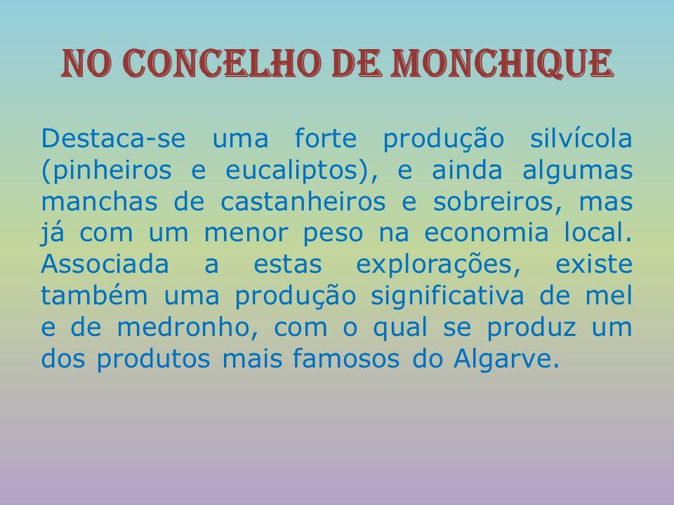 No concelho de Monchique