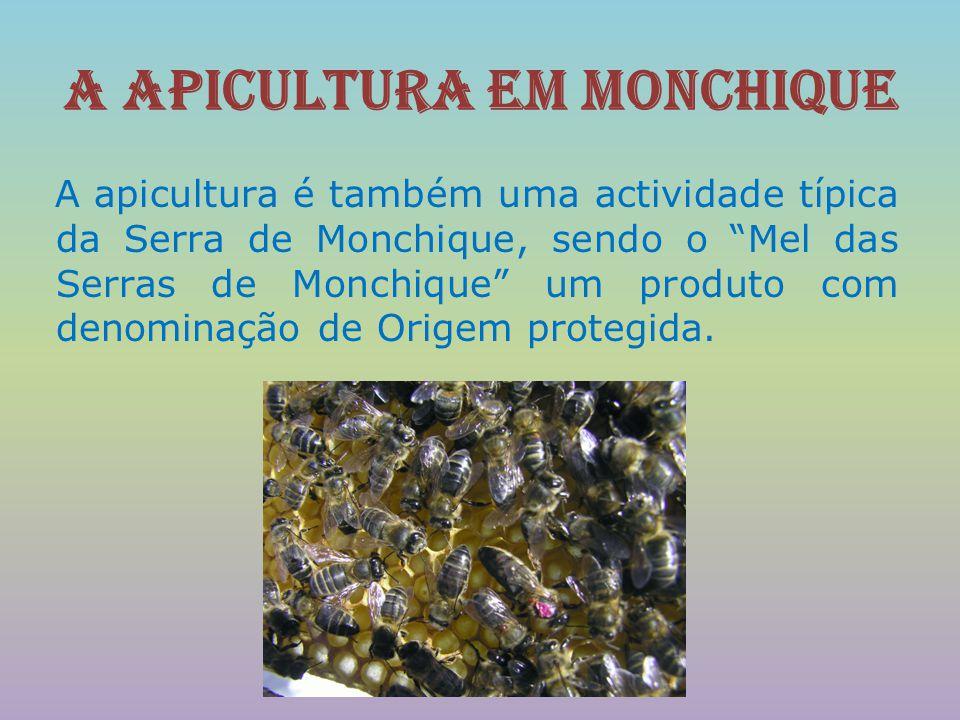 A apicultura em Monchique