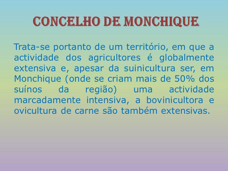 concelho de Monchique