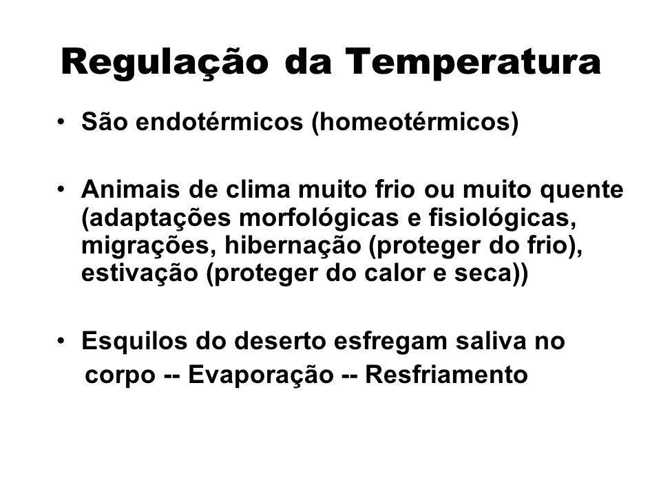 Regulação da Temperatura