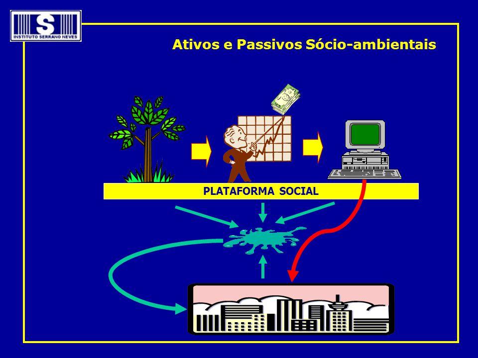 Ativos e Passivos Sócio-ambientais