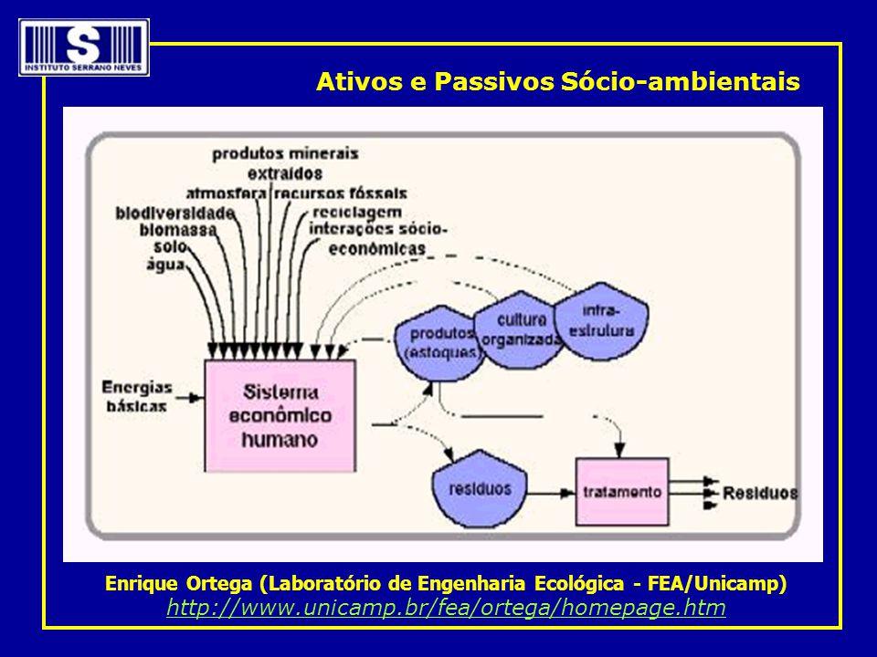 Enrique Ortega (Laboratório de Engenharia Ecológica - FEA/Unicamp)