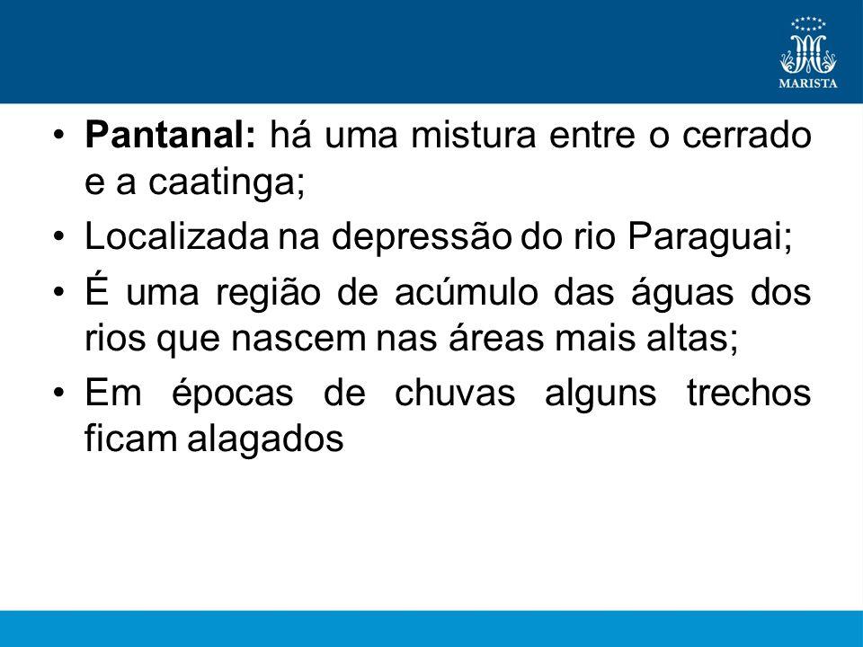Pantanal: há uma mistura entre o cerrado e a caatinga;