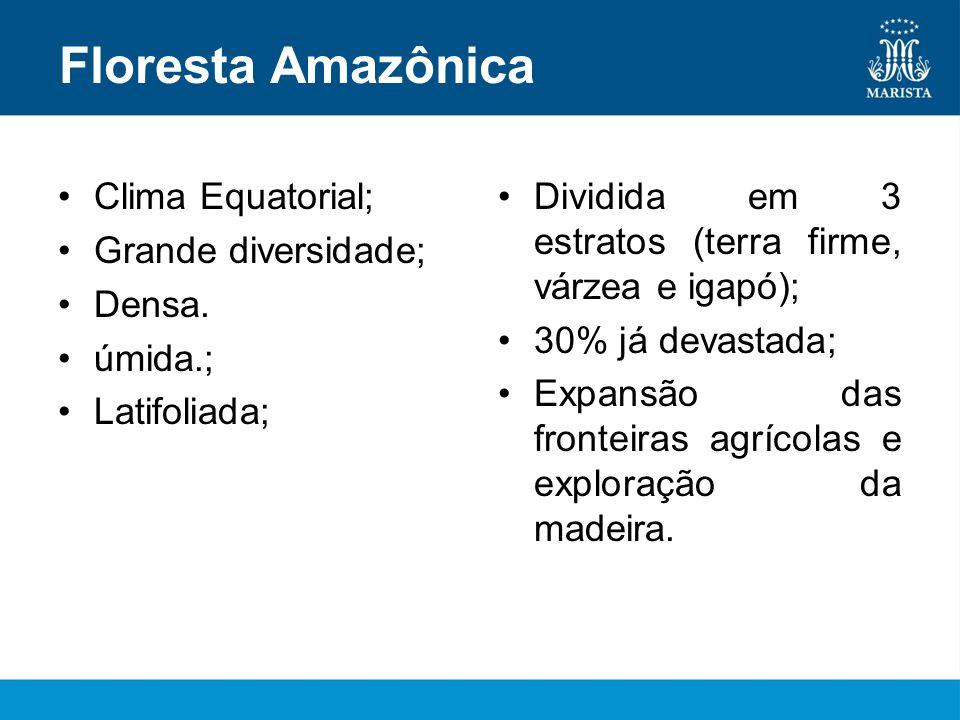Floresta Amazônica Clima Equatorial; Grande diversidade; Densa.