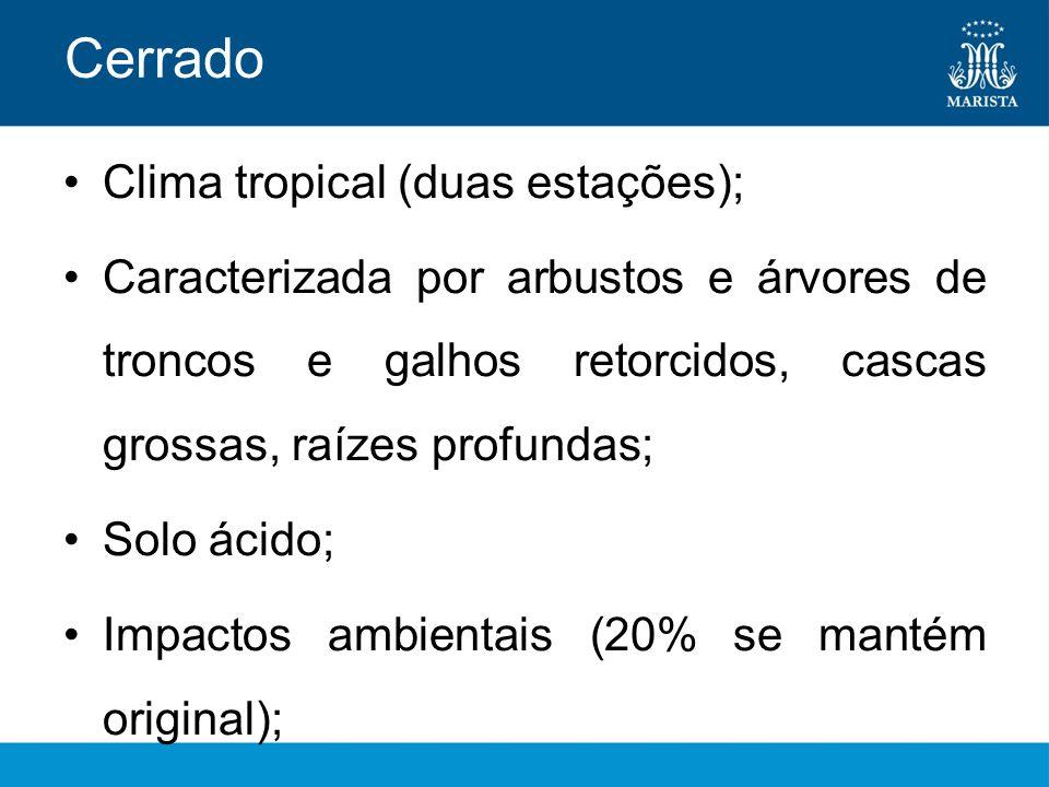 Cerrado Clima tropical (duas estações);