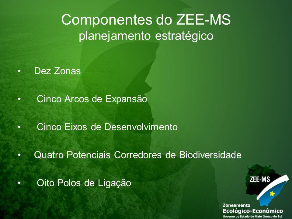 Componentes do ZEE-MS planejamento estratégico