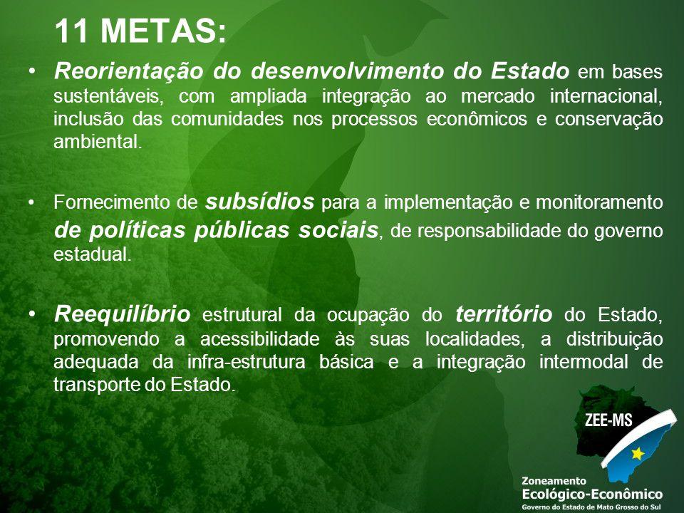 11 METAS: