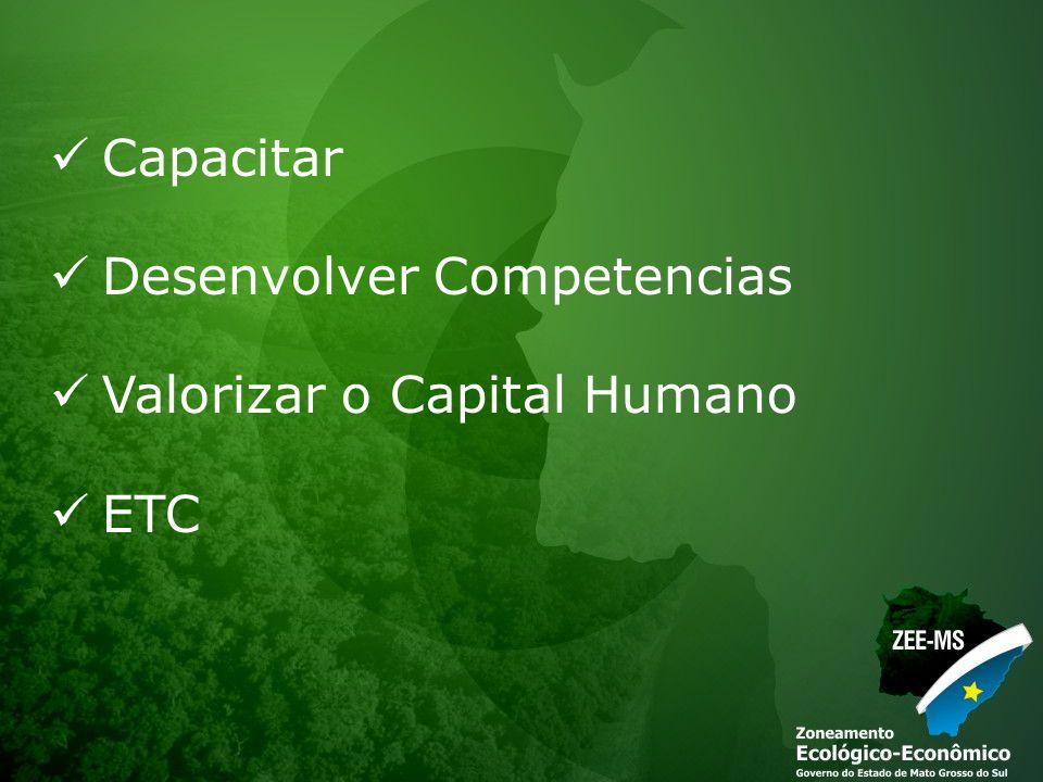 Capacitar Desenvolver Competencias Valorizar o Capital Humano ETC