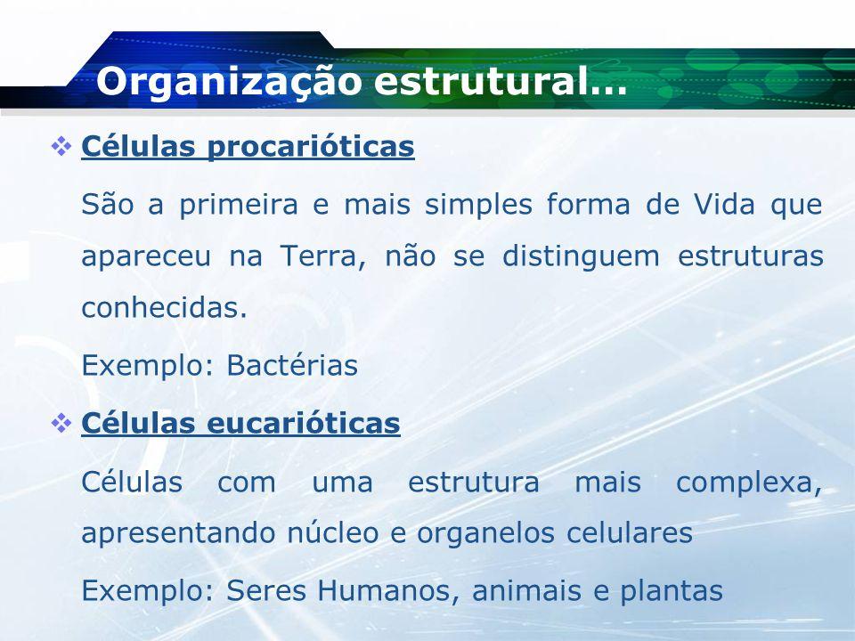 Organização estrutural…