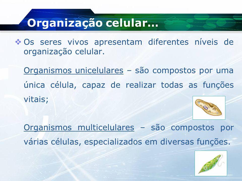 Organização celular… Os seres vivos apresentam diferentes níveis de organização celular.