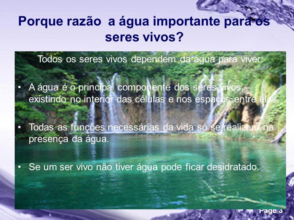 Porque razão a água importante para os seres vivos