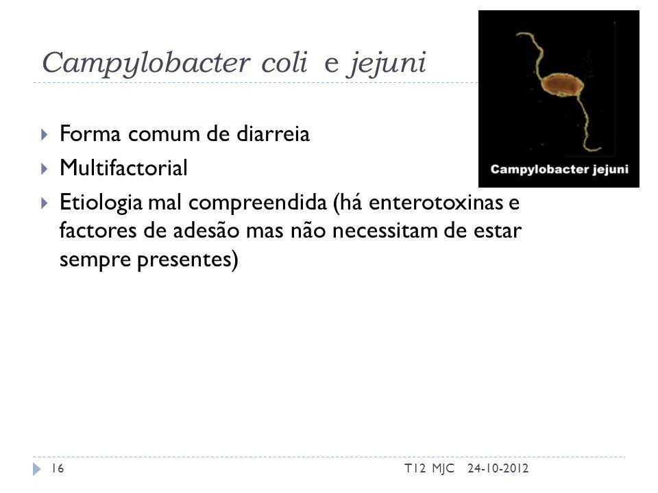 Campylobacter coli e jejuni