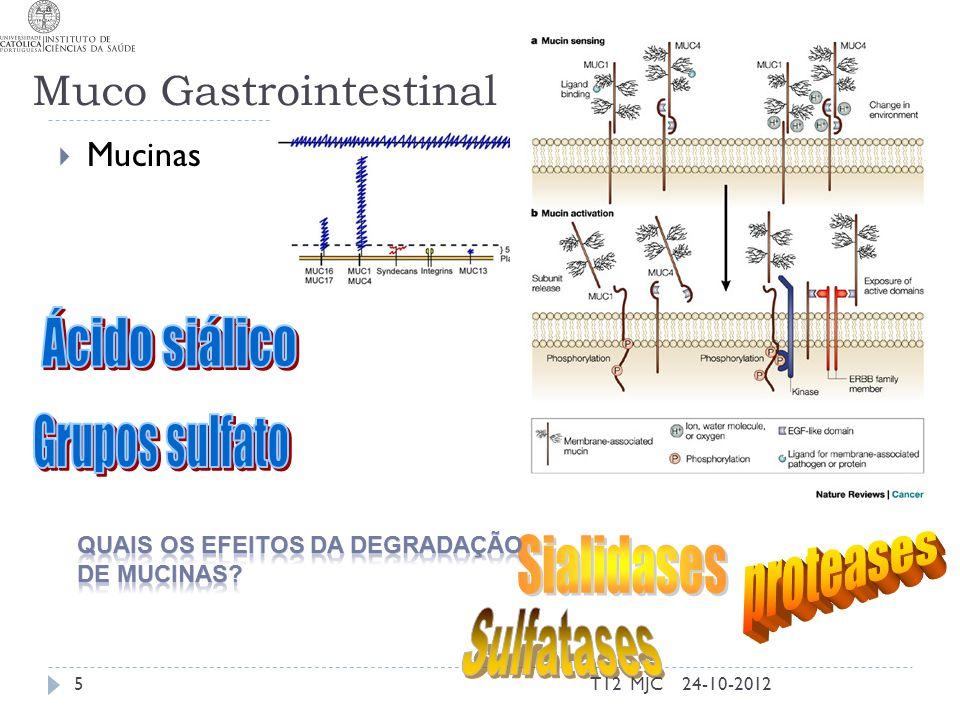 Muco Gastrointestinal