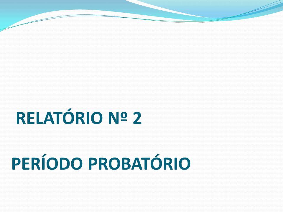 Relatório nº 2 PERÍODO PROBATÓRIO