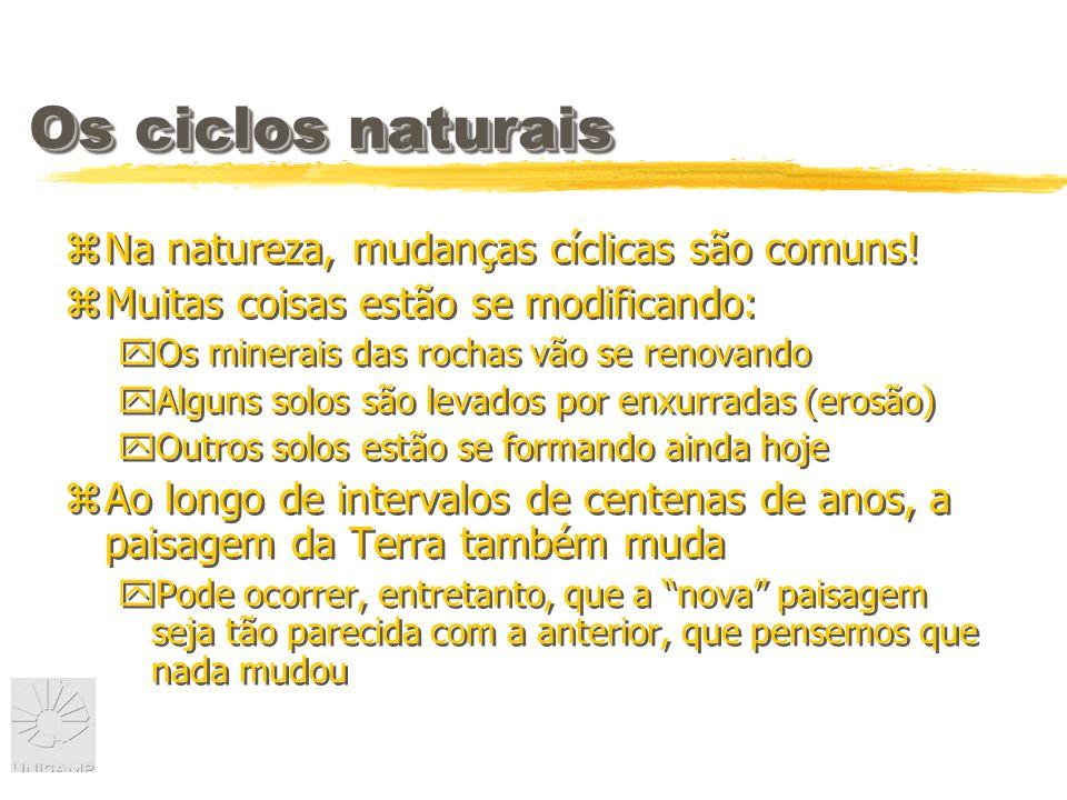 Os ciclos naturais Na natureza, mudanças cíclicas são comuns!