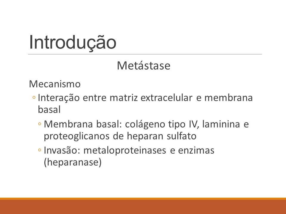 Introdução Metástase Mecanismo