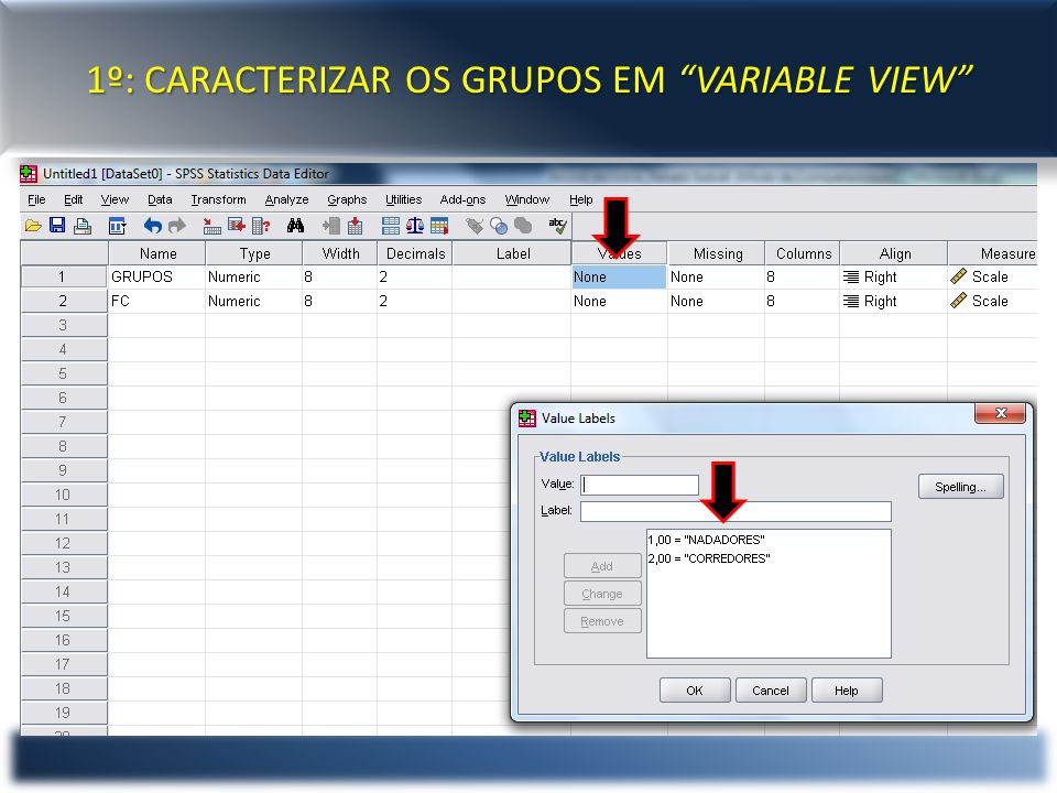 1º: CARACTERIZAR OS GRUPOS EM VARIABLE VIEW