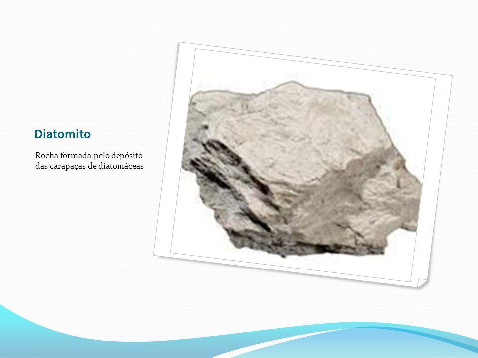 Diatomito Rocha formada pelo depósito das carapaças de diatomáceas