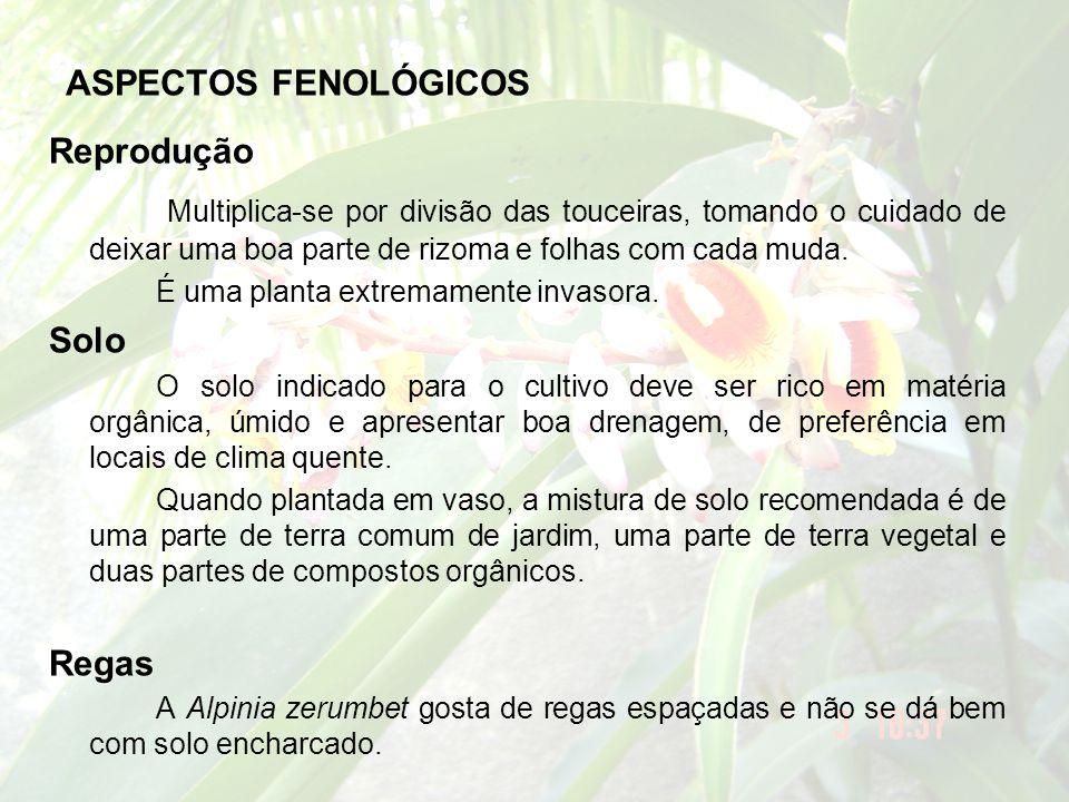 ASPECTOS FENOLÓGICOS Reprodução.