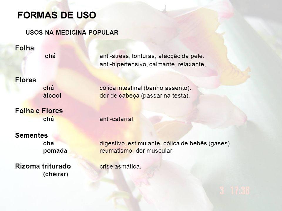 FORMAS DE USO USOS NA MEDICINA POPULAR Folha Flores Folha e Flores