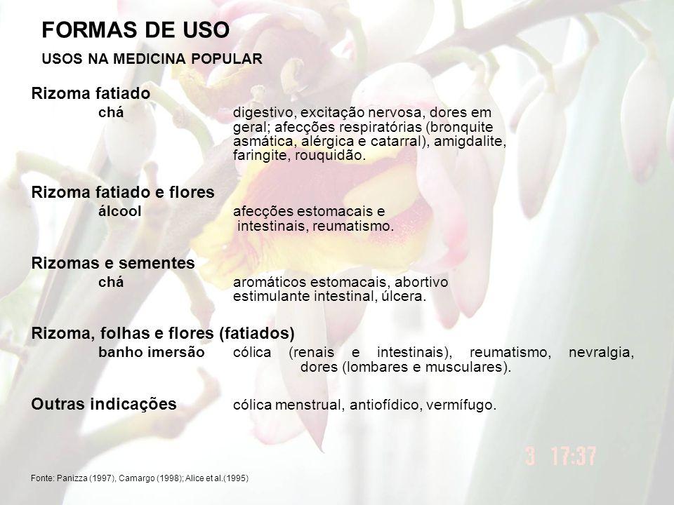 FORMAS DE USO Rizoma fatiado Rizoma fatiado e flores