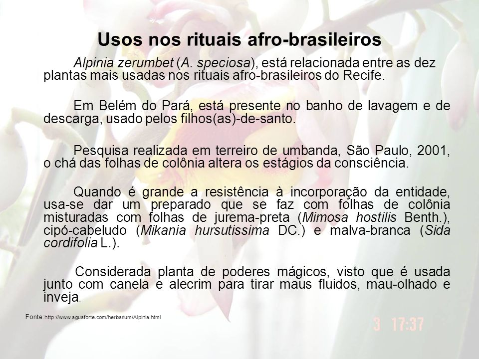 Usos nos rituais afro-brasileiros