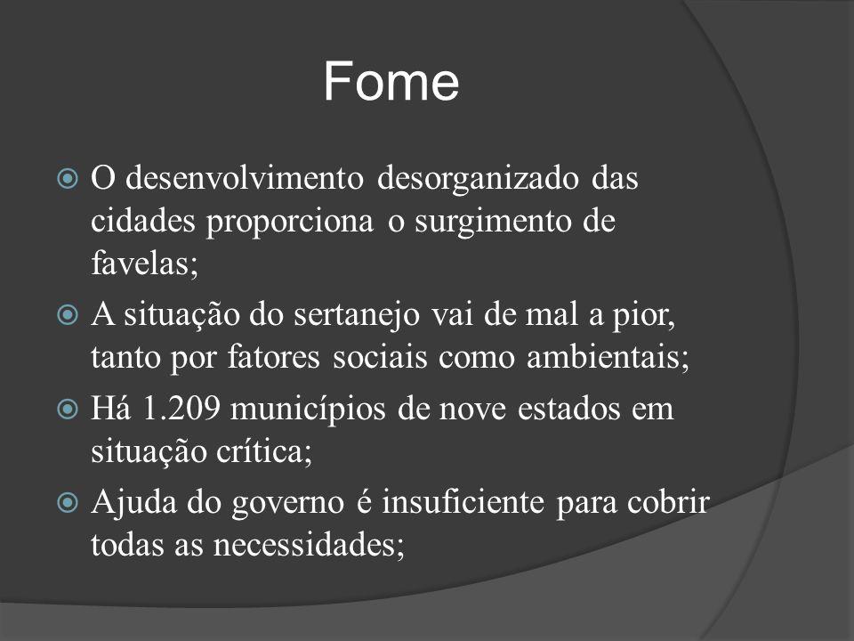 Fome O desenvolvimento desorganizado das cidades proporciona o surgimento de favelas;