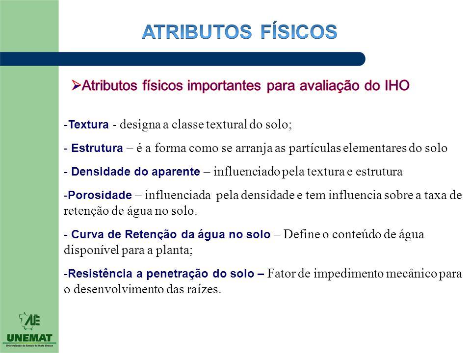 ATRIBUTOS FÍSICOS Atributos físicos importantes para avaliação do IHO