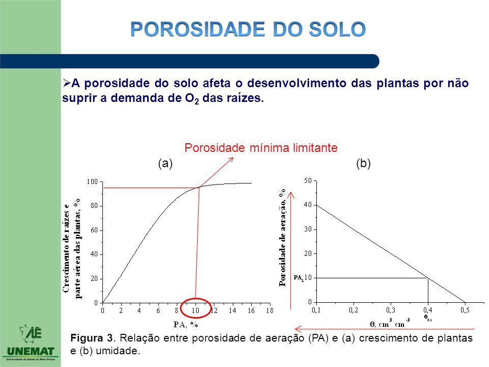 POROSIDADE DO SOLO A porosidade do solo afeta o desenvolvimento das plantas por não suprir a demanda de O2 das raízes.