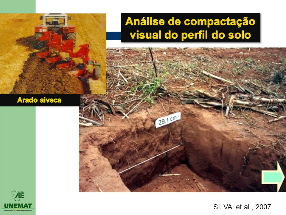 Análise de compactação visual do perfil do solo