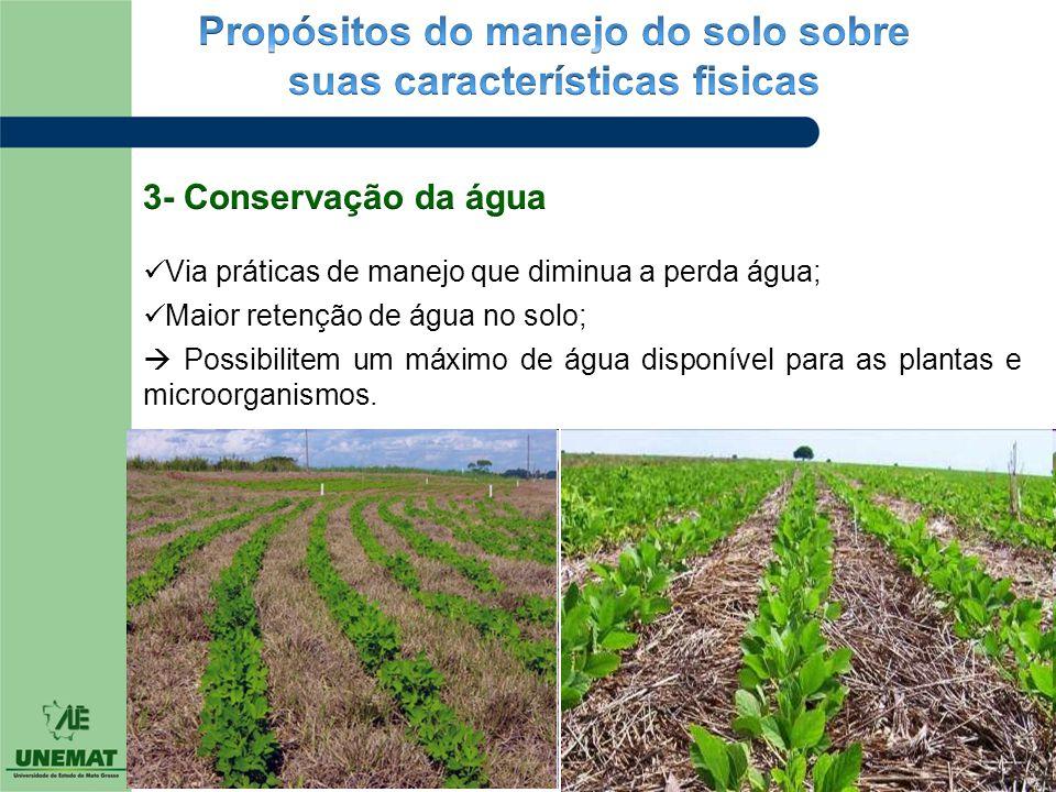 Propósitos do manejo do solo sobre suas características fisicas