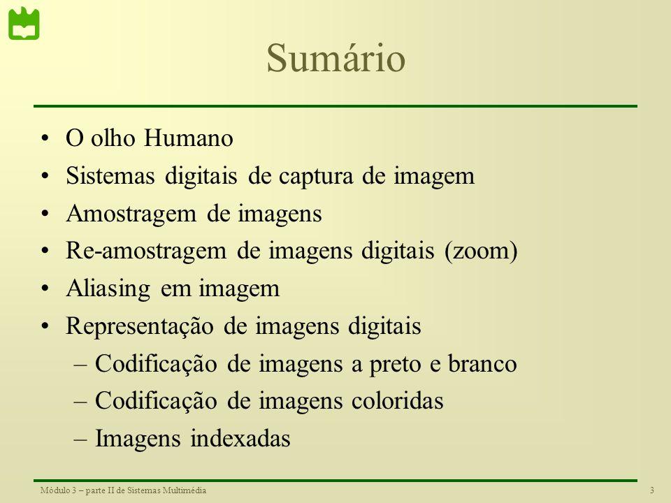 Sumário O olho Humano Sistemas digitais de captura de imagem