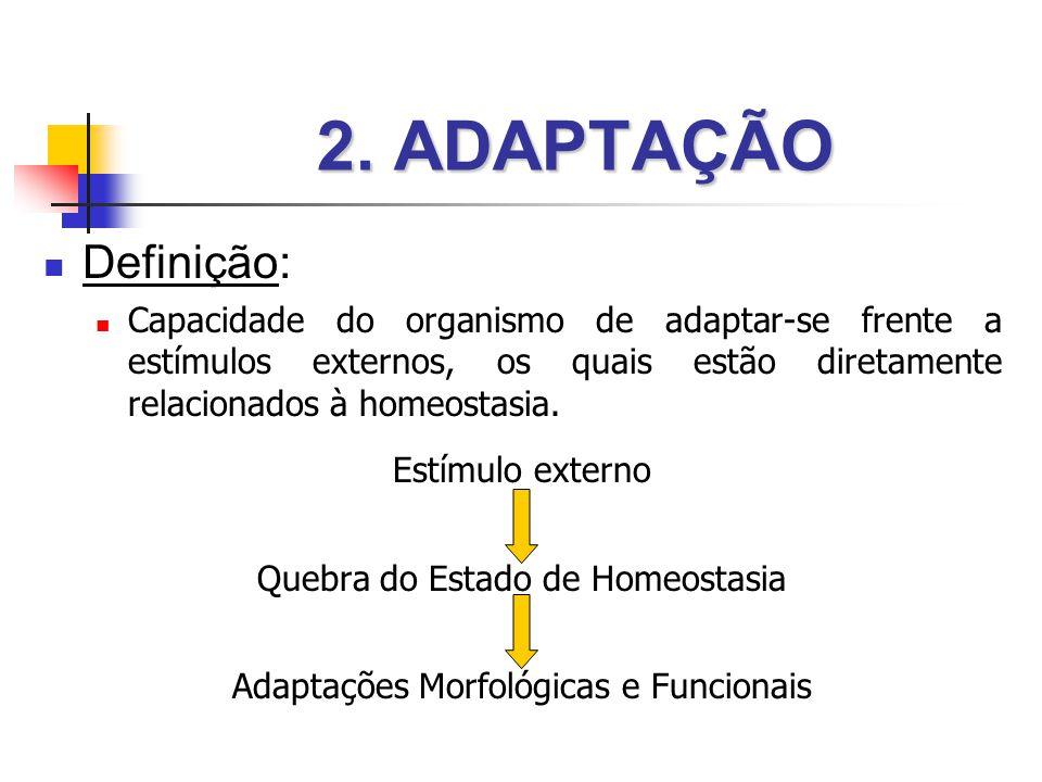 2. ADAPTAÇÃO Definição: Capacidade do organismo de adaptar-se frente a estímulos externos, os quais estão diretamente relacionados à homeostasia.