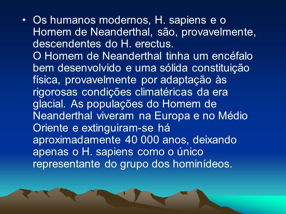 Os humanos modernos, H. sapiens e o Homem de Neanderthal, são, provavelmente, descendentes do H.
