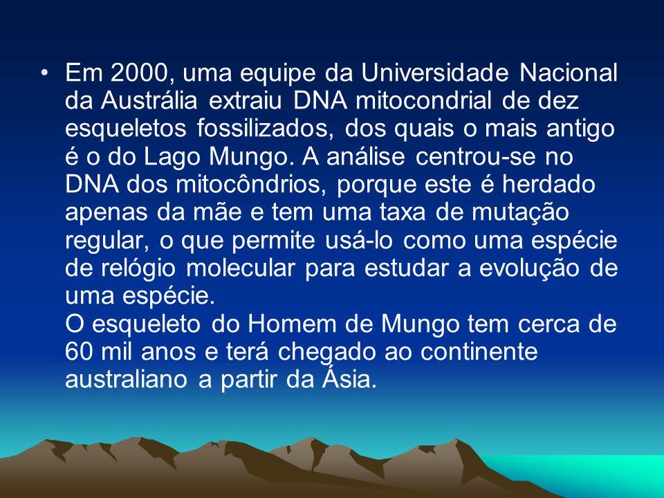 Em 2000, uma equipe da Universidade Nacional da Austrália extraiu DNA mitocondrial de dez esqueletos fossilizados, dos quais o mais antigo é o do Lago Mungo. A análise centrou-se no DNA dos mitocôndrios, porque este é herdado apenas da mãe e tem uma taxa de mutação regular, o que permite usá-lo como uma espécie de relógio molecular para estudar a evolução de uma espécie.