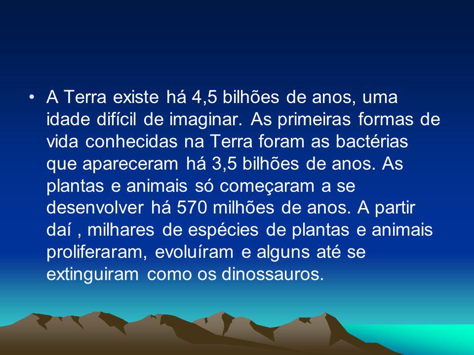 A Terra existe há 4,5 bilhões de anos, uma idade difícil de imaginar