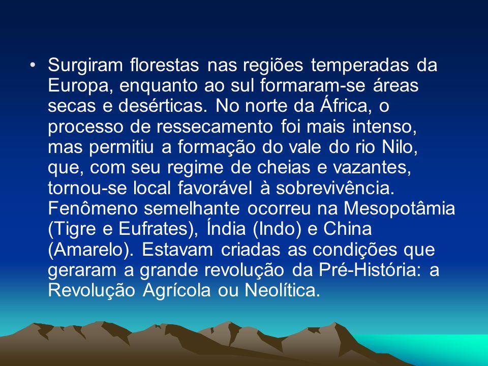Surgiram florestas nas regiões temperadas da Europa, enquanto ao sul formaram-se áreas secas e desérticas.