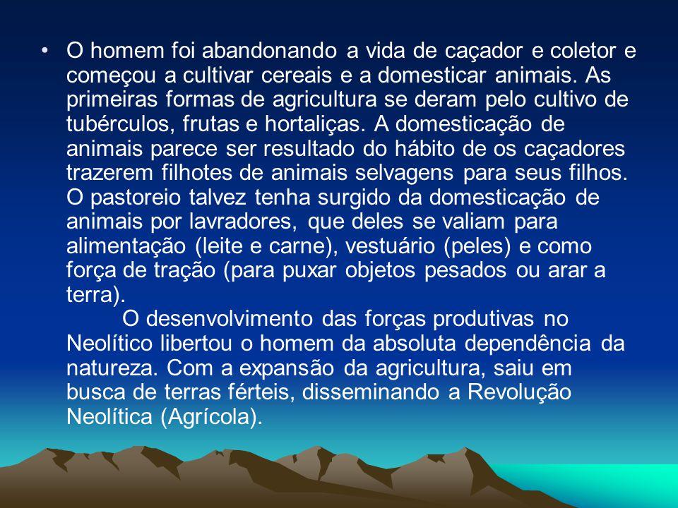 O homem foi abandonando a vida de caçador e coletor e começou a cultivar cereais e a domesticar animais.
