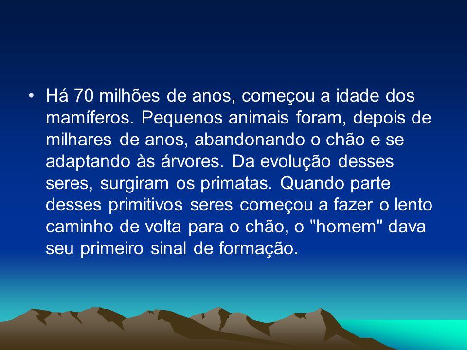Há 70 milhões de anos, começou a idade dos mamíferos