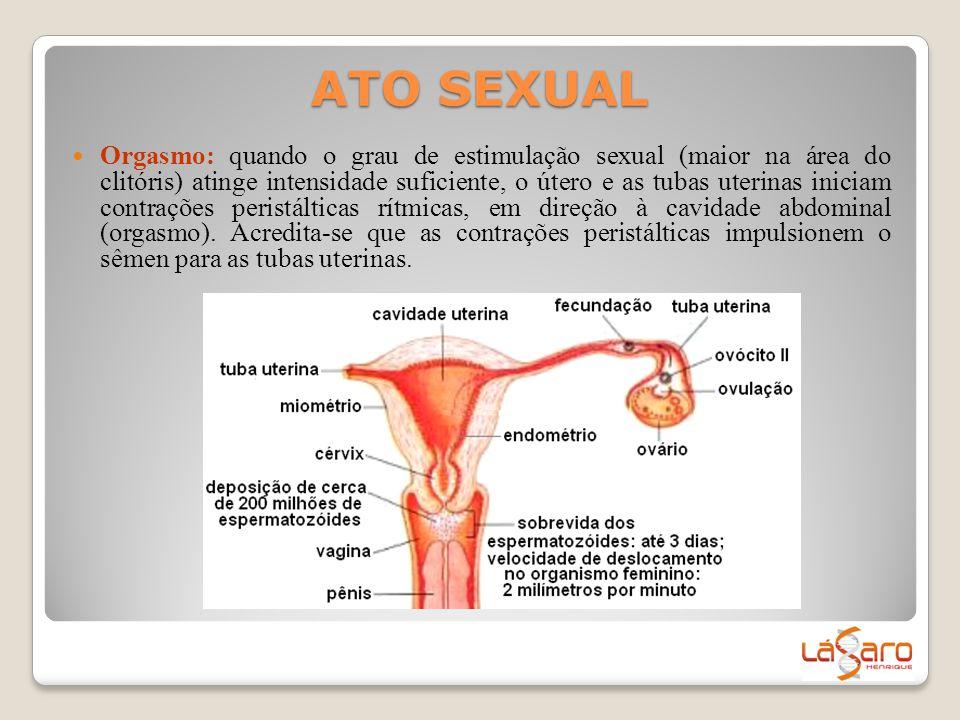 ATO SEXUAL