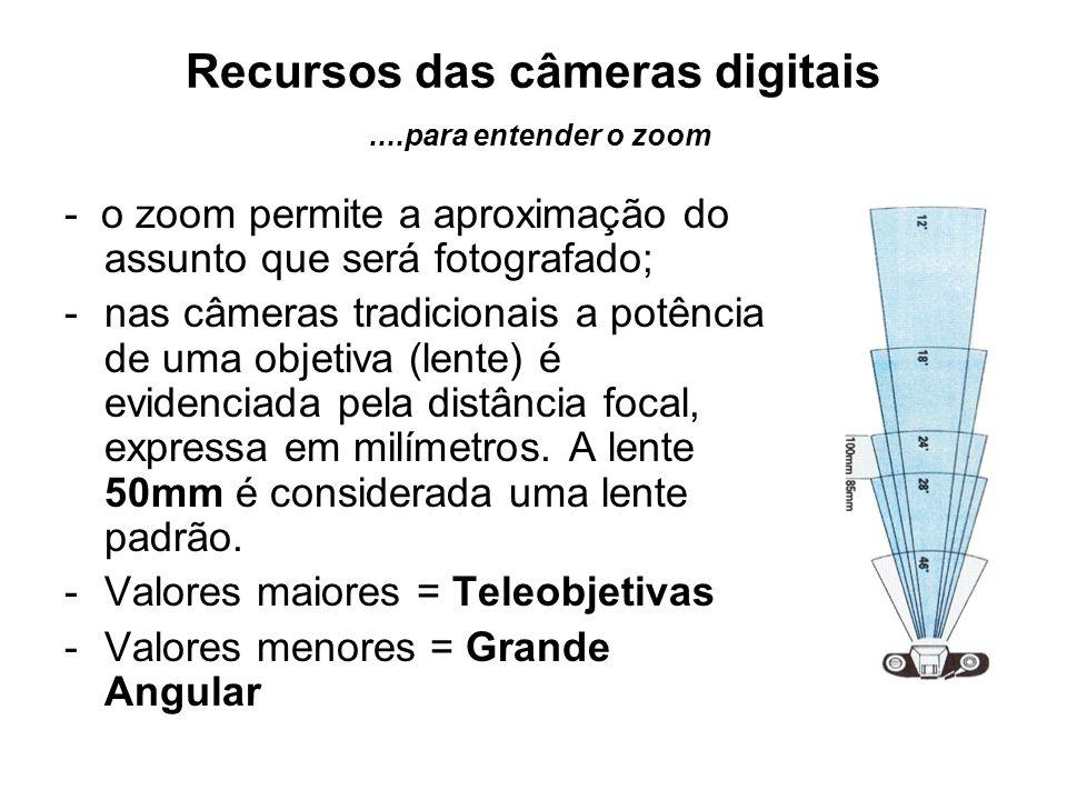 Recursos das câmeras digitais ....para entender o zoom