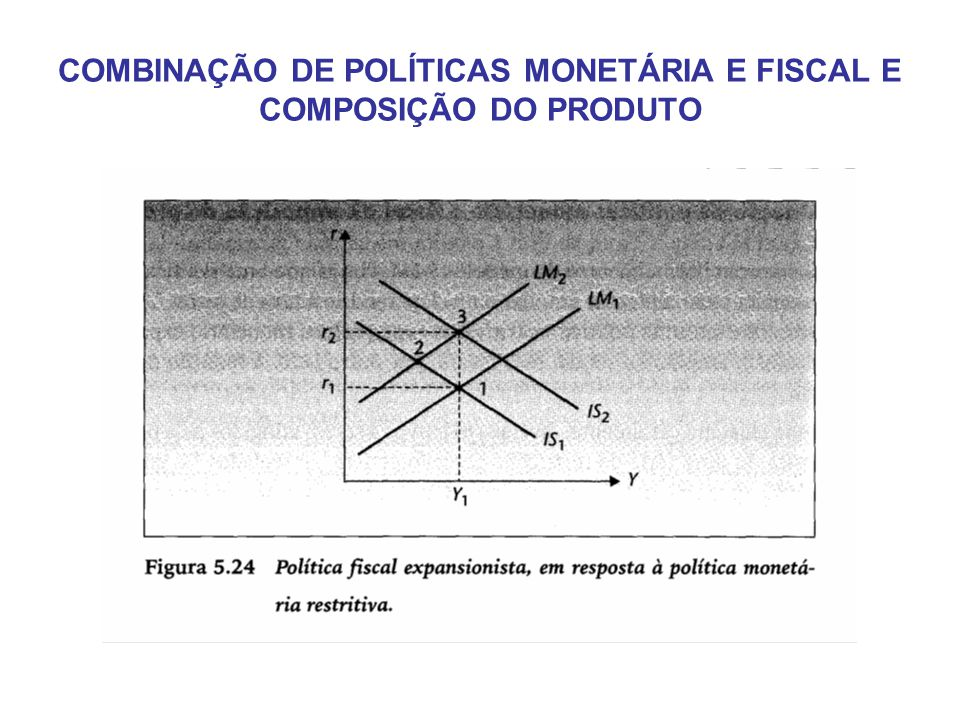 COMBINAÇÃO DE POLÍTICAS MONETÁRIA E FISCAL E COMPOSIÇÃO DO PRODUTO